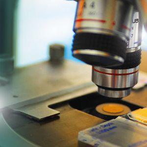 Ανδρολογικό εργαστήριο Ζεγκινιάδου μετρήσεις σπερμοδιαγράμματος