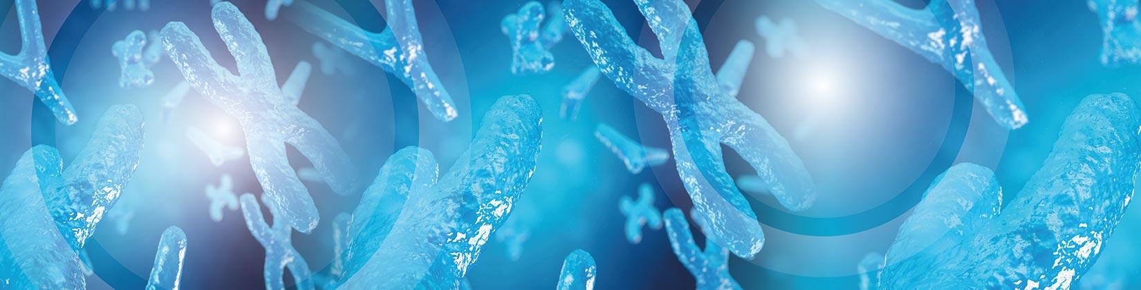Ανδρολογικό εργαστήριο Ζεγκινιάδου Μικροβιολογία χρωμόσωμα Υ